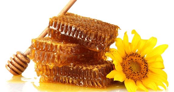 نکته های جالب در مورد عسل و زنبور عسل