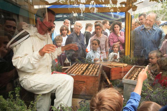 آموزش زنبورداری در فرانسه