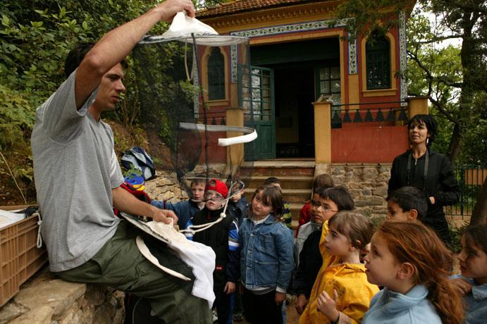 آموزش تولید عسل در فرانسه